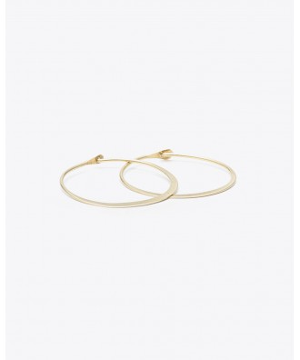 Small Brass Hoop Earrings
